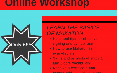 Makaton Level 1